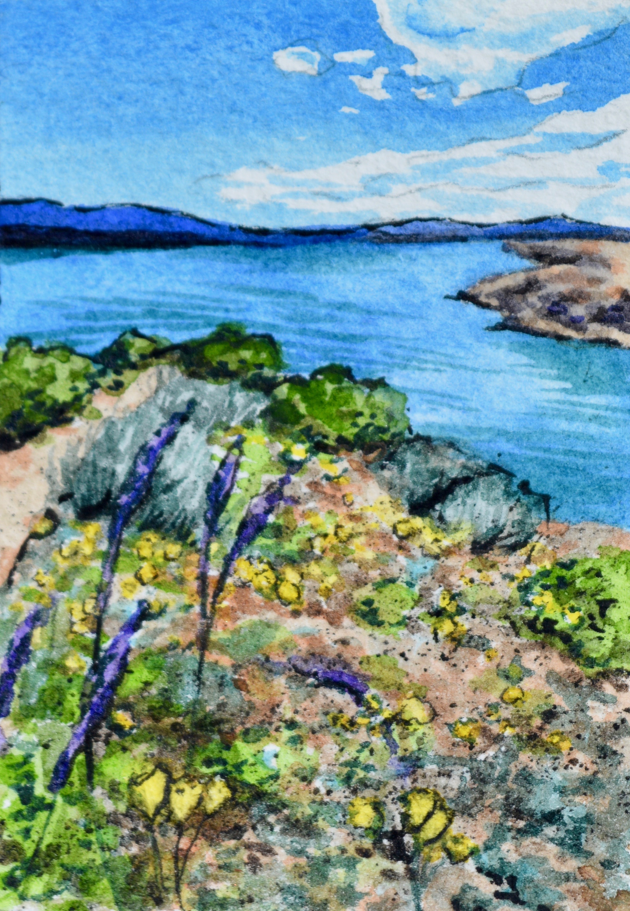 """""""Cattail Cove State Park, Arizona: 3/2/19, 15:44:23""""  For sale as of this blog posting  2x3"""""""