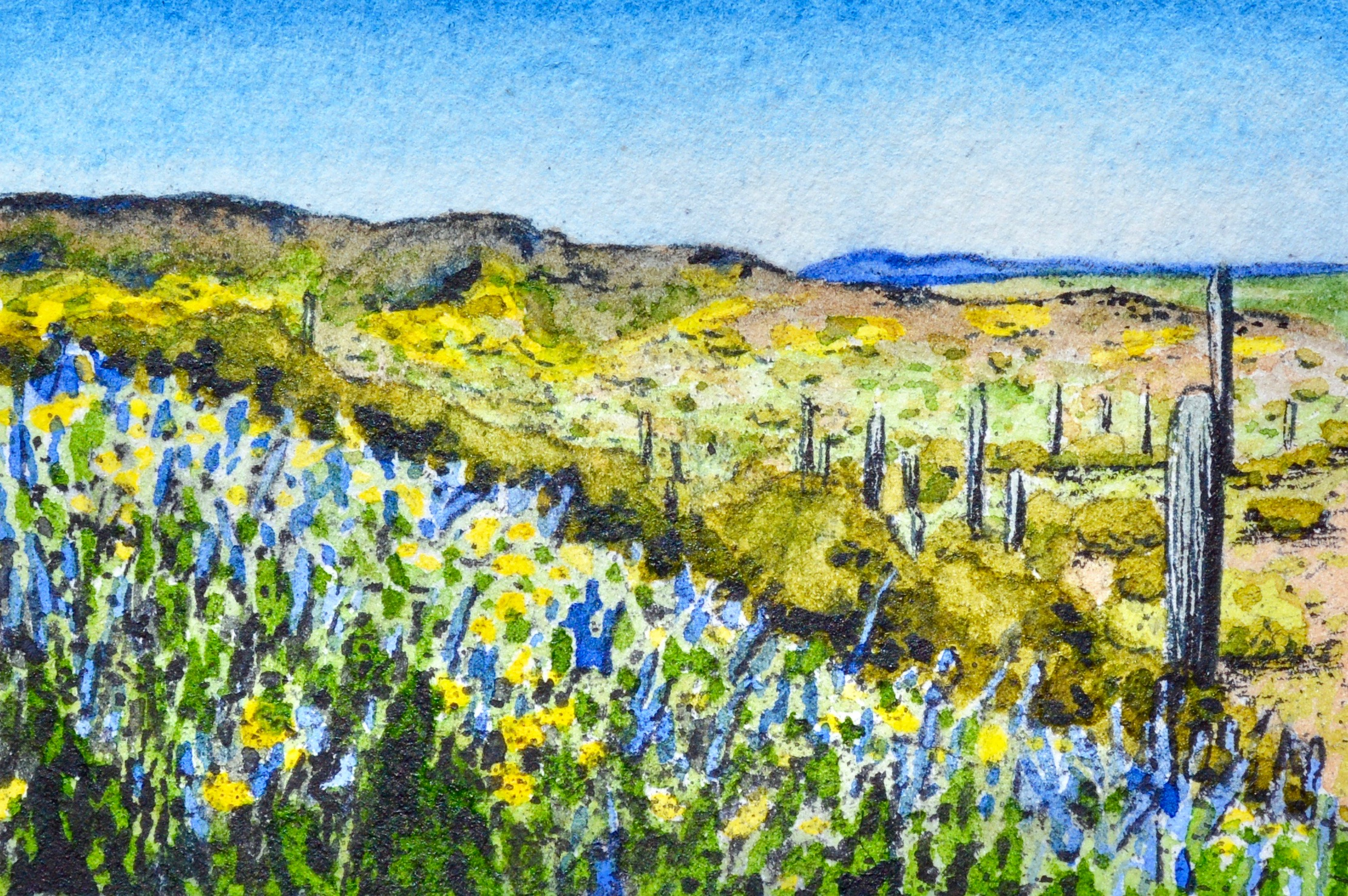 """Picacho Peak State Park, Arizona: 3/6,19, 9:39:03"" SOLD 3x2"""