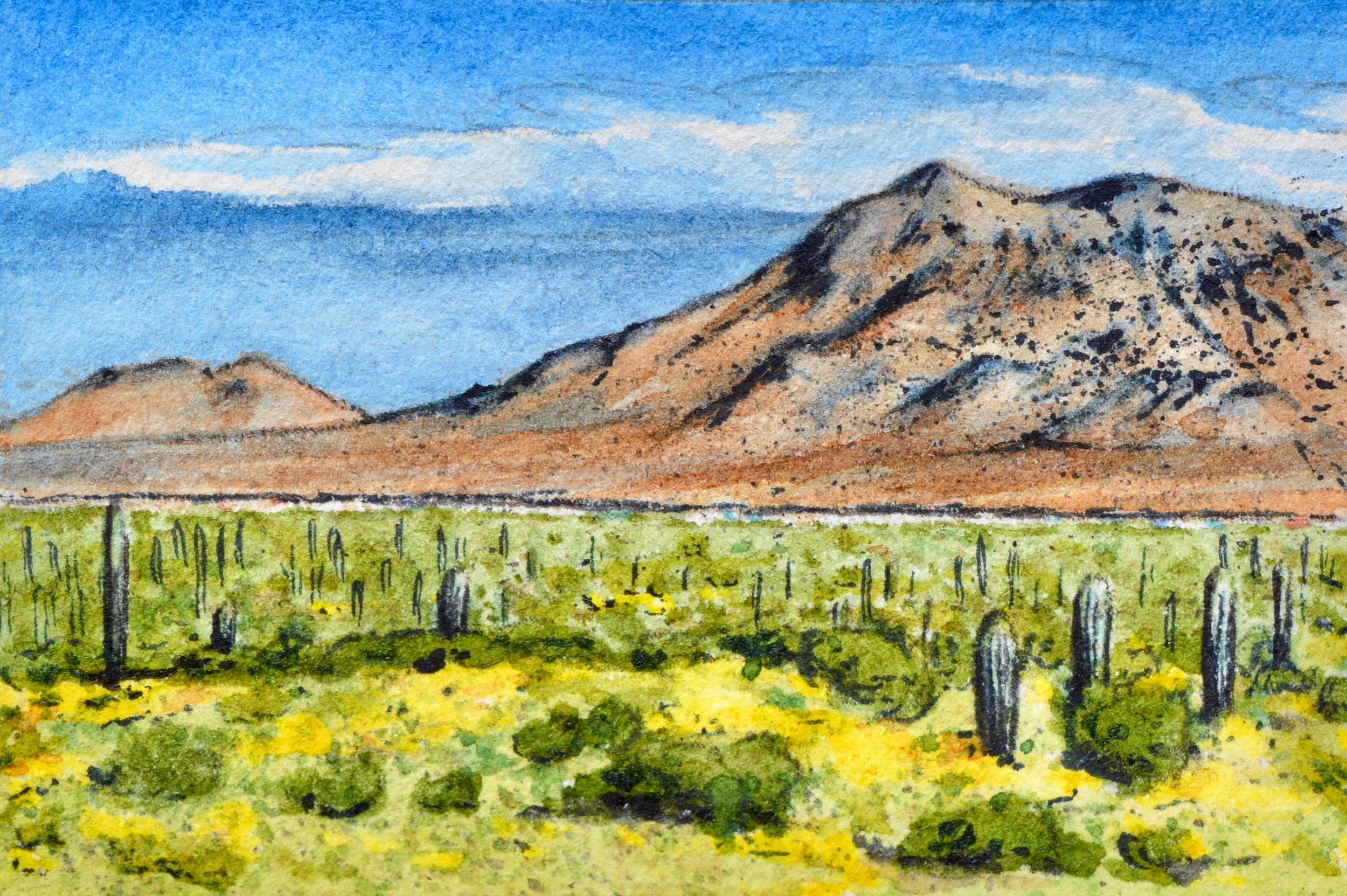 """Picacho Peak State Park, Arizona: 3/6,19, 9:06:01"" SOLD 2x3"""