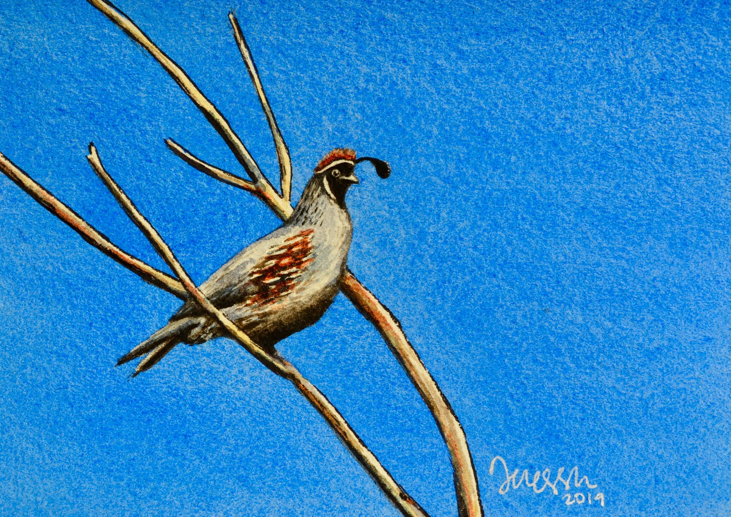 """Perched Plumage""  For sale as of this blog posting  3.5x5"" on watercolor paper"