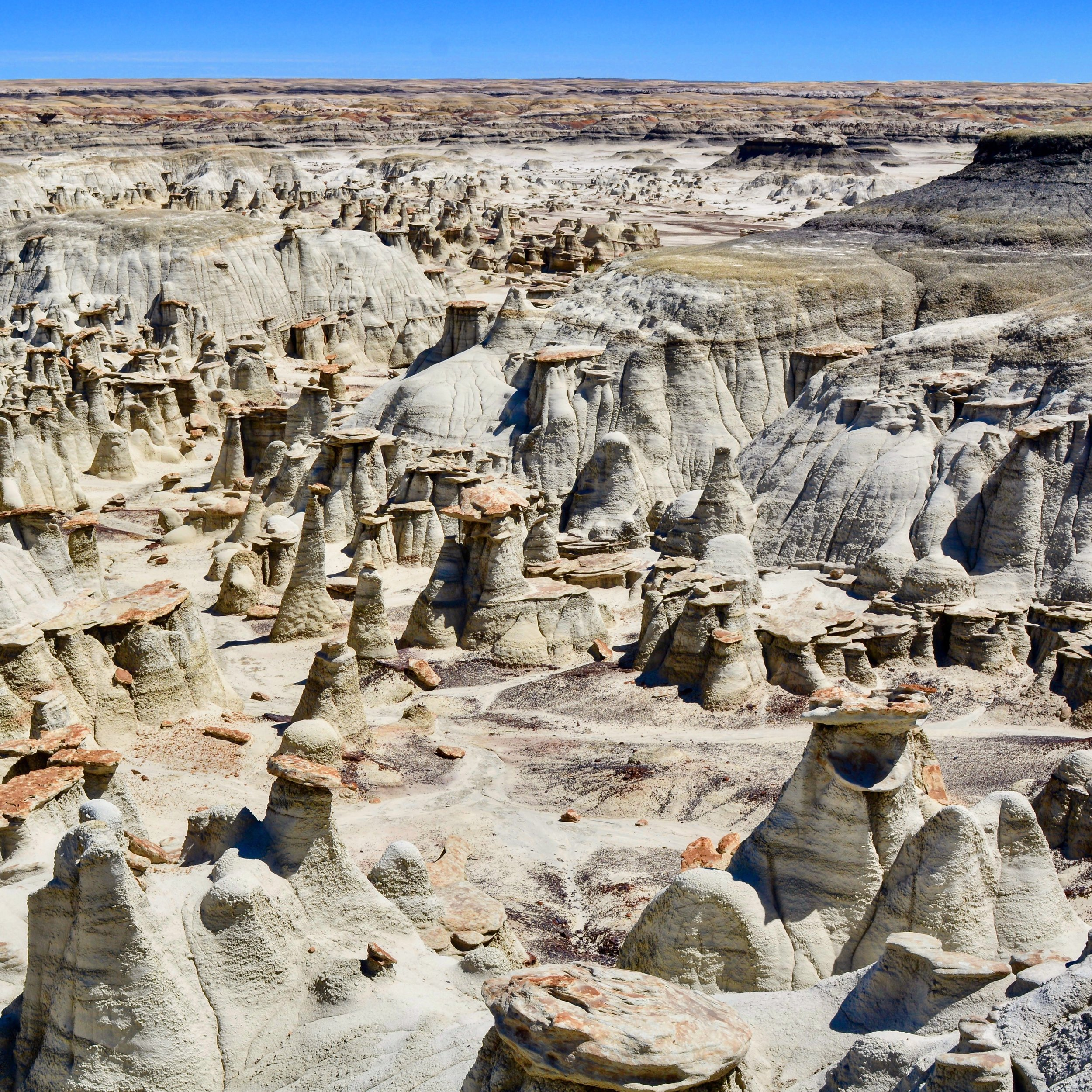 Bisti/De-Na-Zin Wilderness,