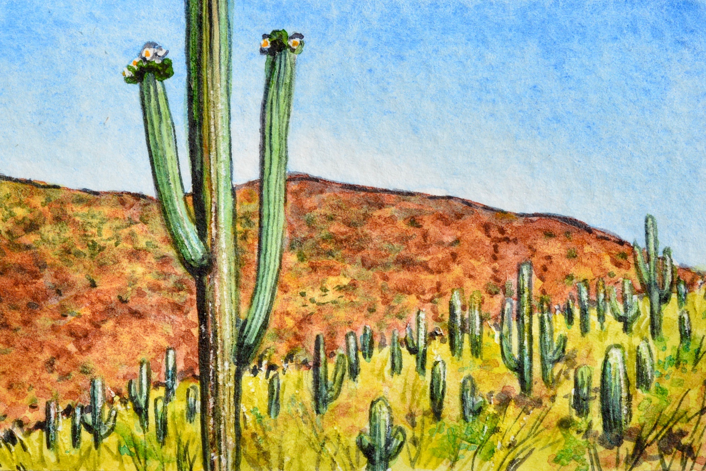 """Mesa, Arizona: 5/12/19, 10:06:30"" 3x2"" watercolor on 140 lb. watercolor paper For sale as of this blog posting -  visit my online shop  to purchase."