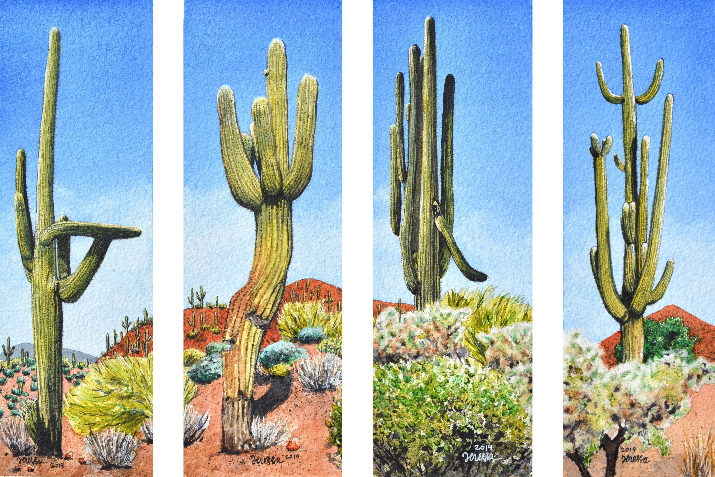"""Tentative series title: """"Cacticatures"""" Each panel measures 3x9"""", Watercolor on 300 lb. Arches cold press watercolor paper This series is on hold for upcoming exhibition."""