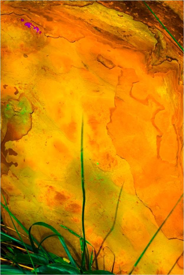 Yellow Stone.jpg