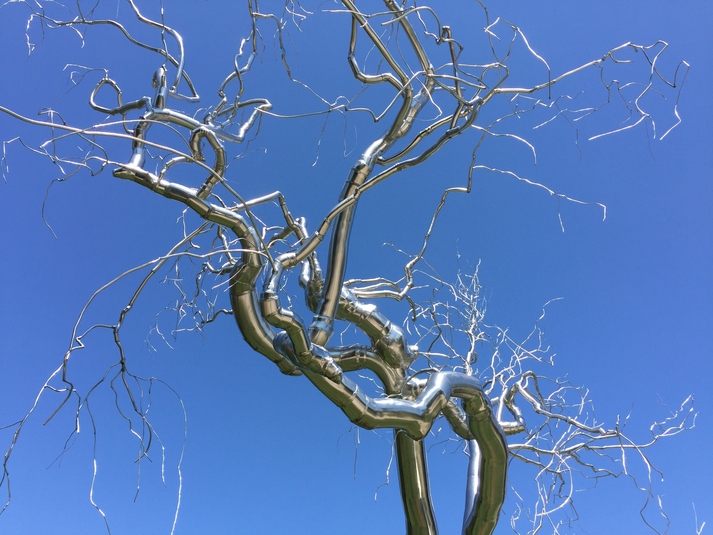 """Roxy Paine's """"Graft"""" at the National Gallery's sculpture garden."""