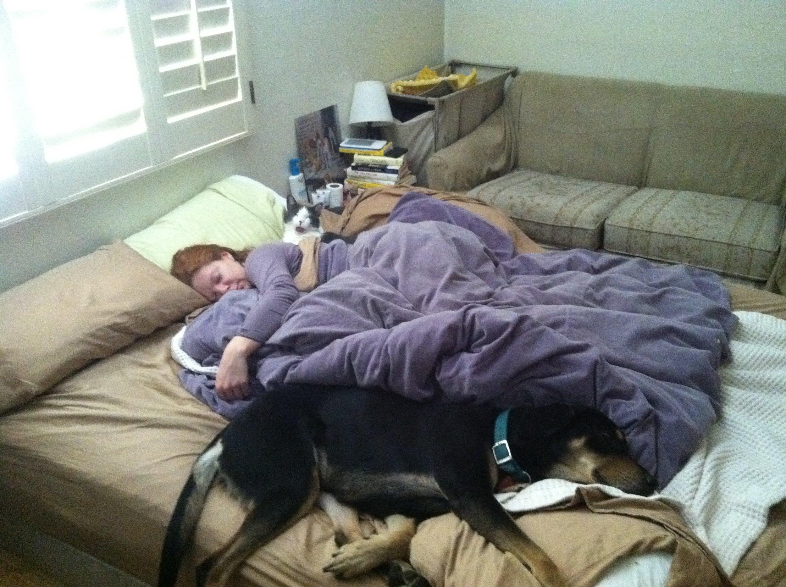 Where am I supposed to sleep? Daisy, Melissa, and Dana ca: 2011