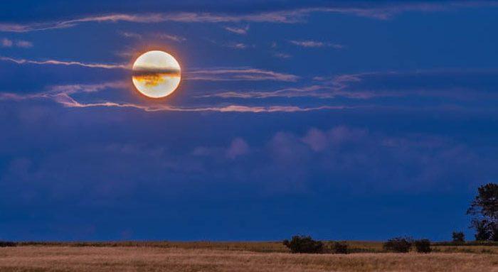 Melissa Among the Wolves Harvest Moon.jpg