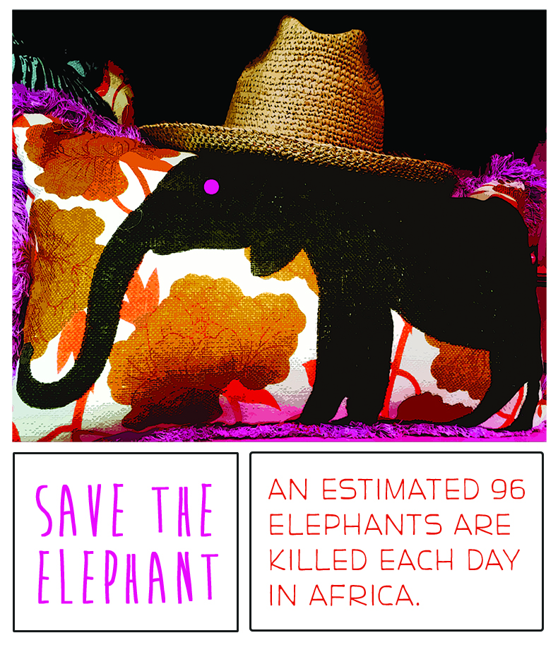 """""""Save the Ellie's"""""""