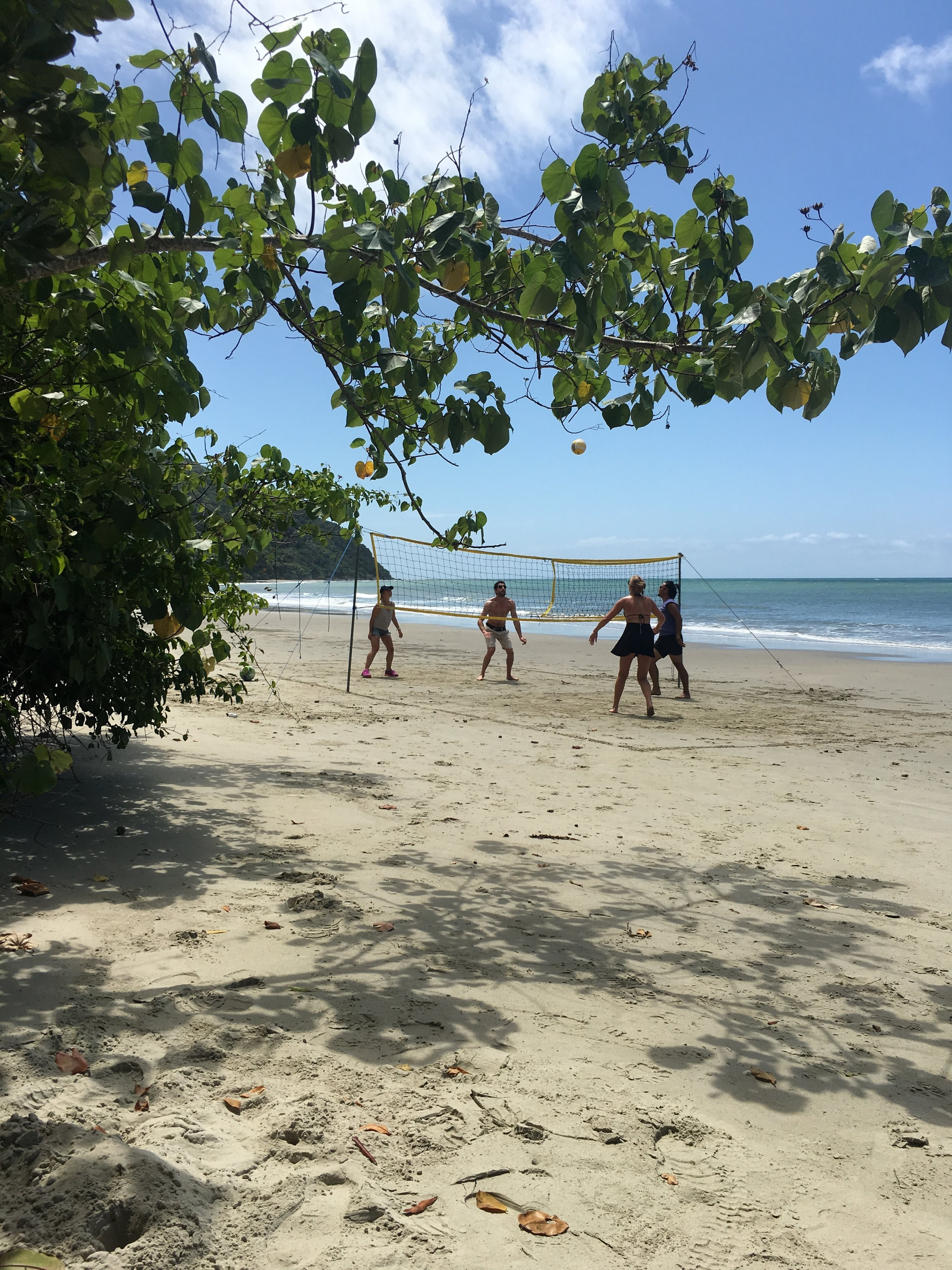 Cape Tribulation and Cairns