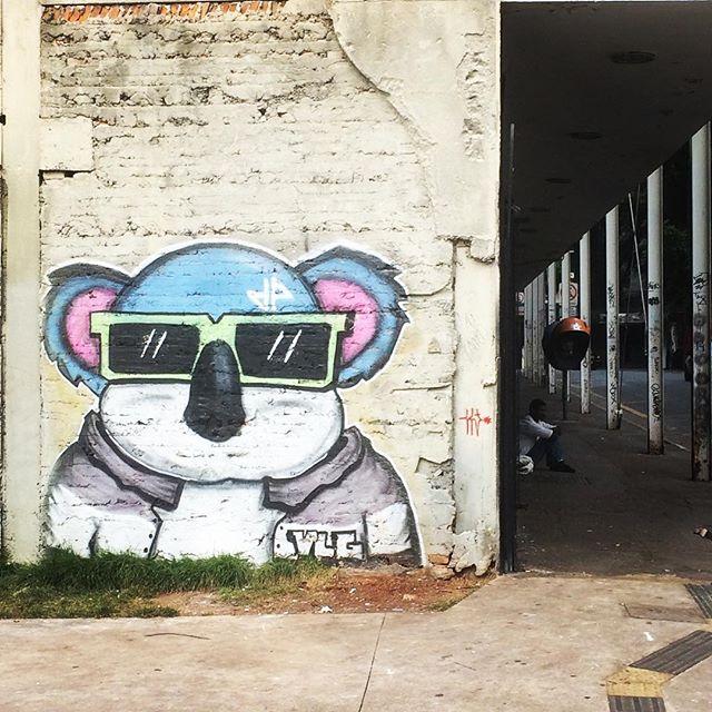 Koalaty street art 🕶🐨 #saopaulo