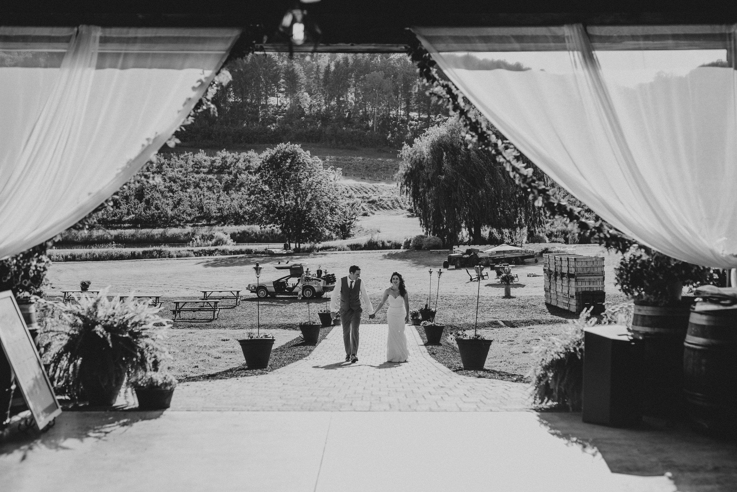 nostrano_vineyards_wedding_0060.JPG