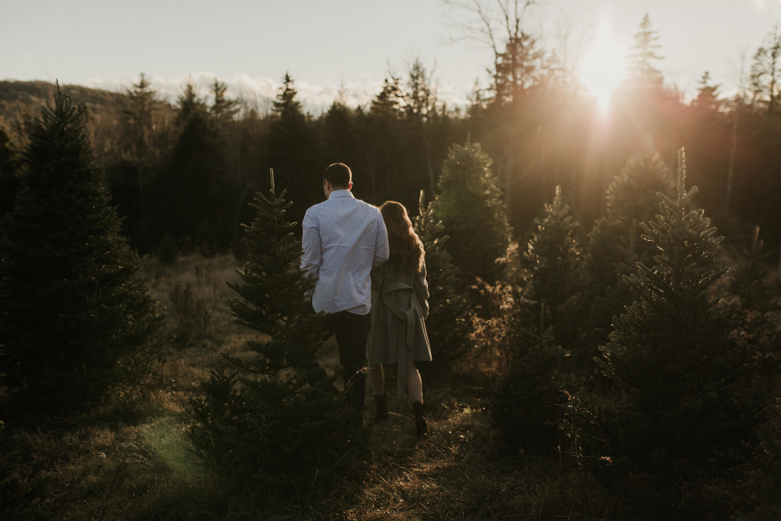 christmas_tree_farm_engagement_shoot_003.JPG