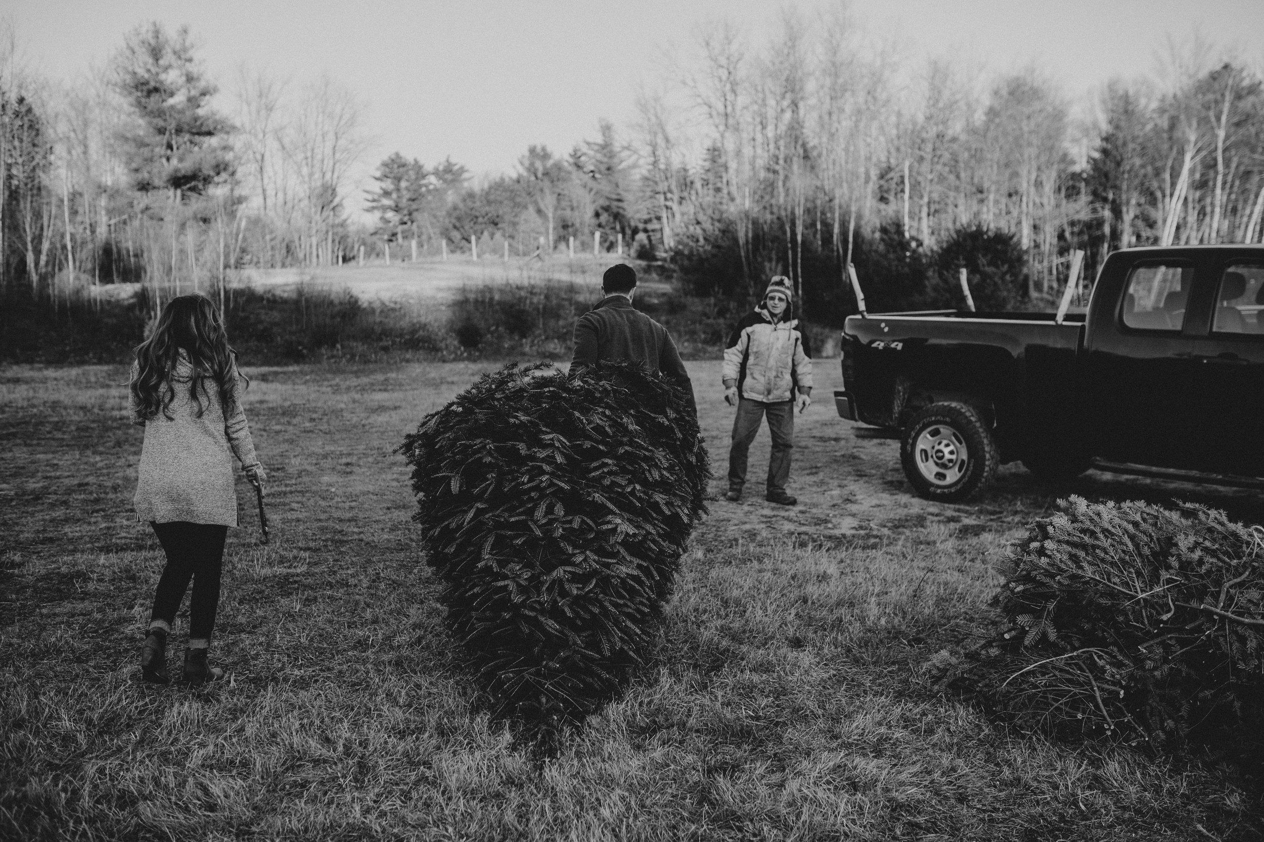 christmas_tree_farm_engagement_shoot_033.JPG
