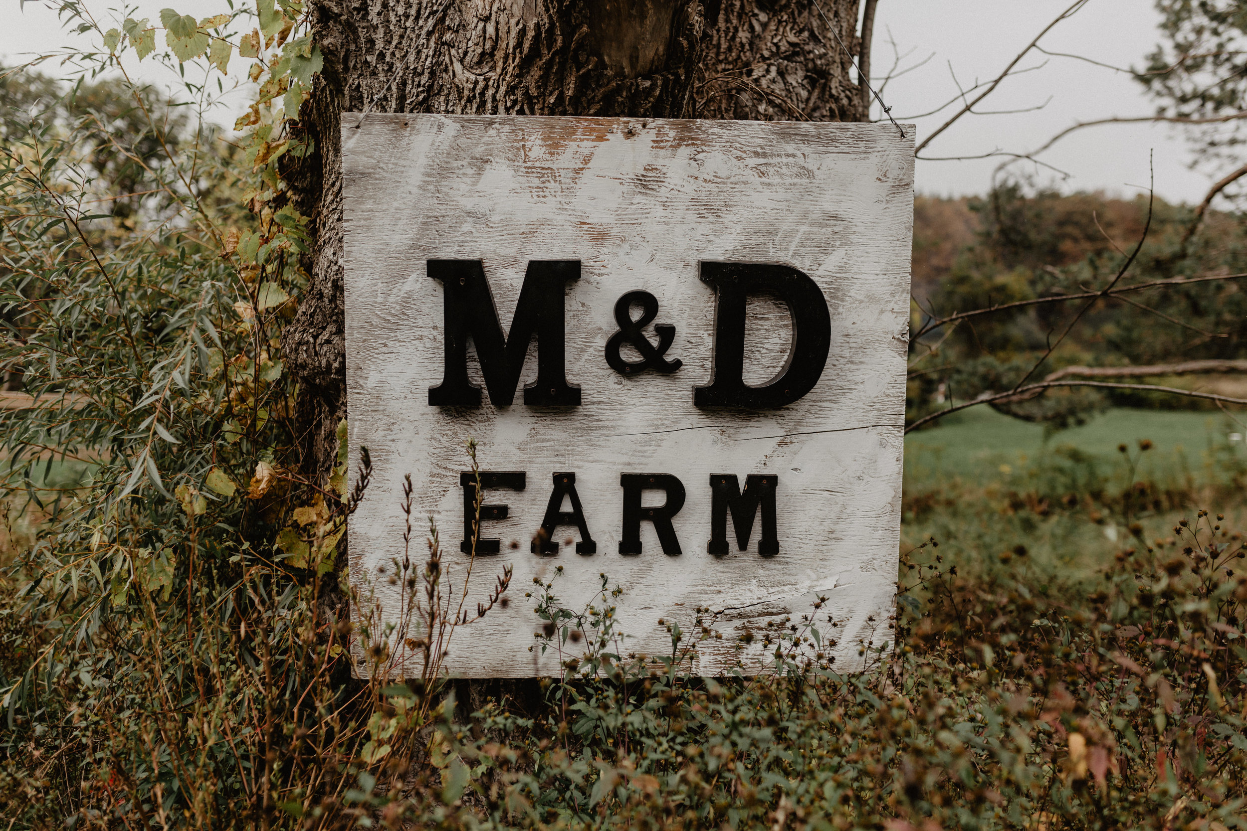 m_and_d_farm_wedding_003.jpg