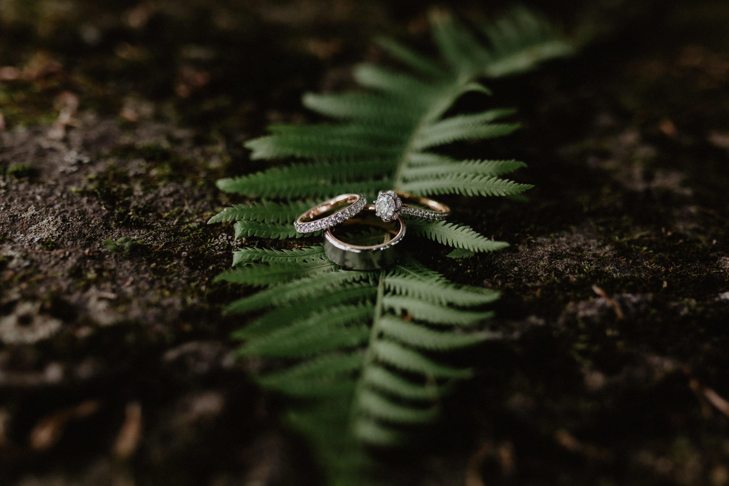 greywacke-meadows-wedding_006.jpg
