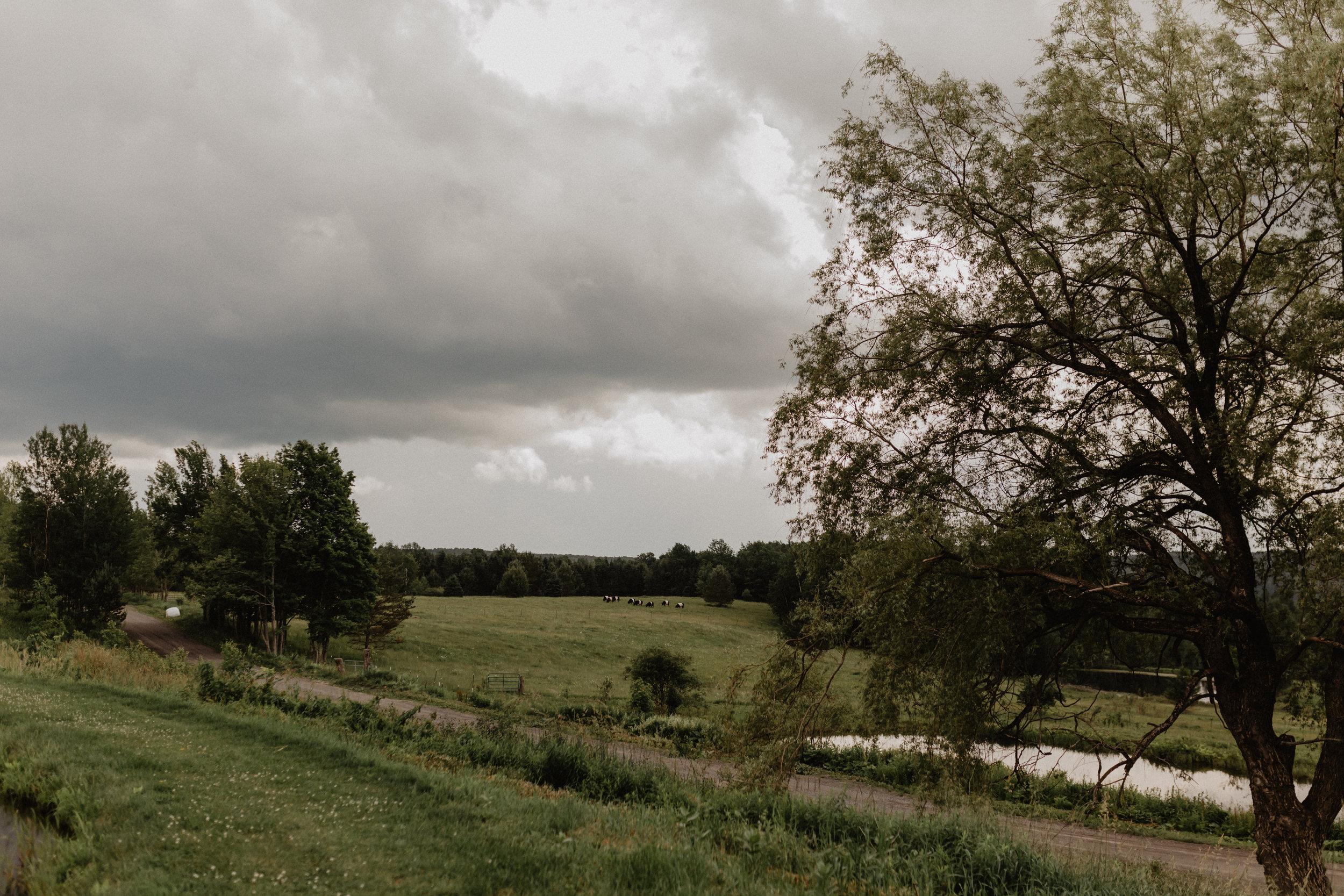seven-ponds-farm-wedding-13.jpg