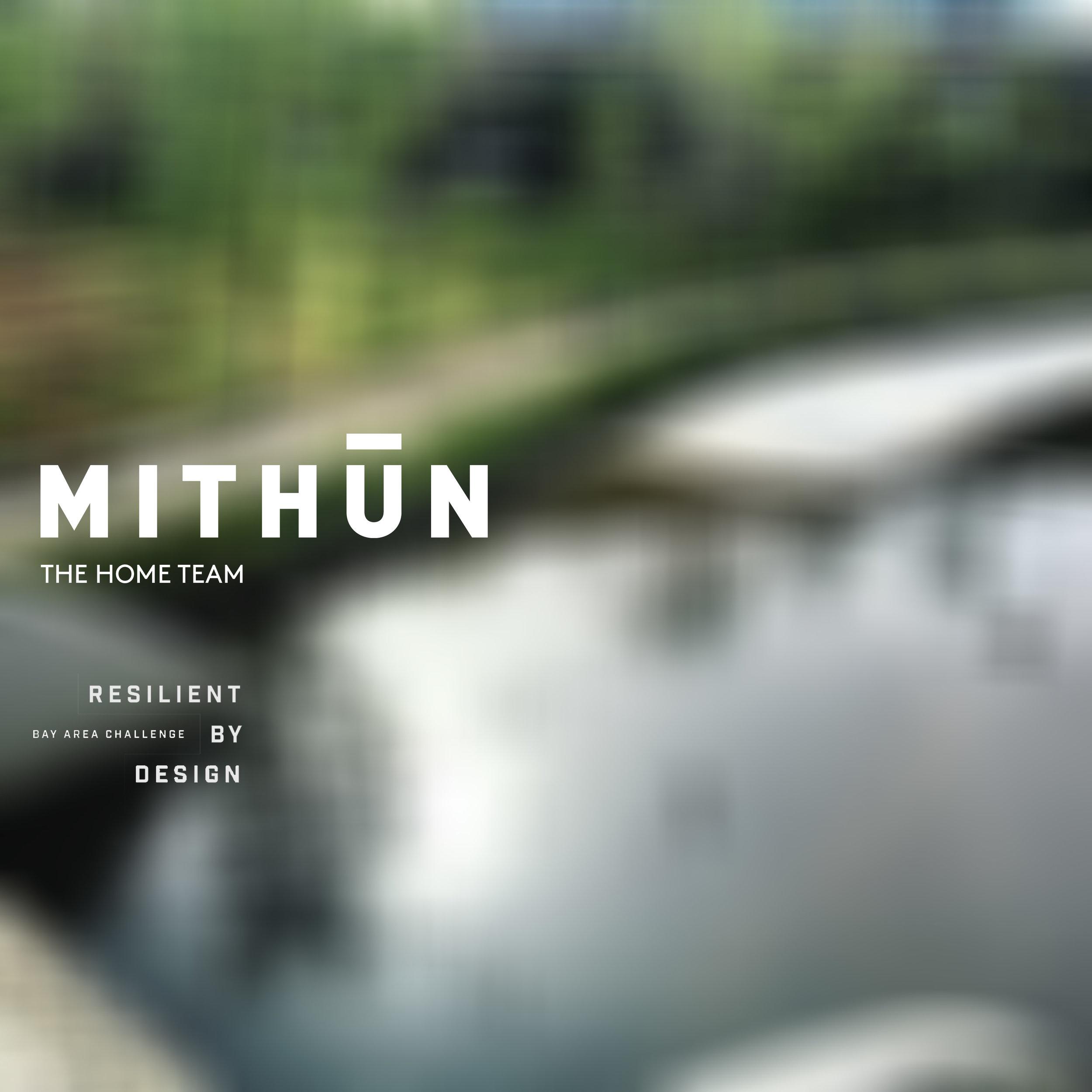 THE HOME TEAM - Mithun