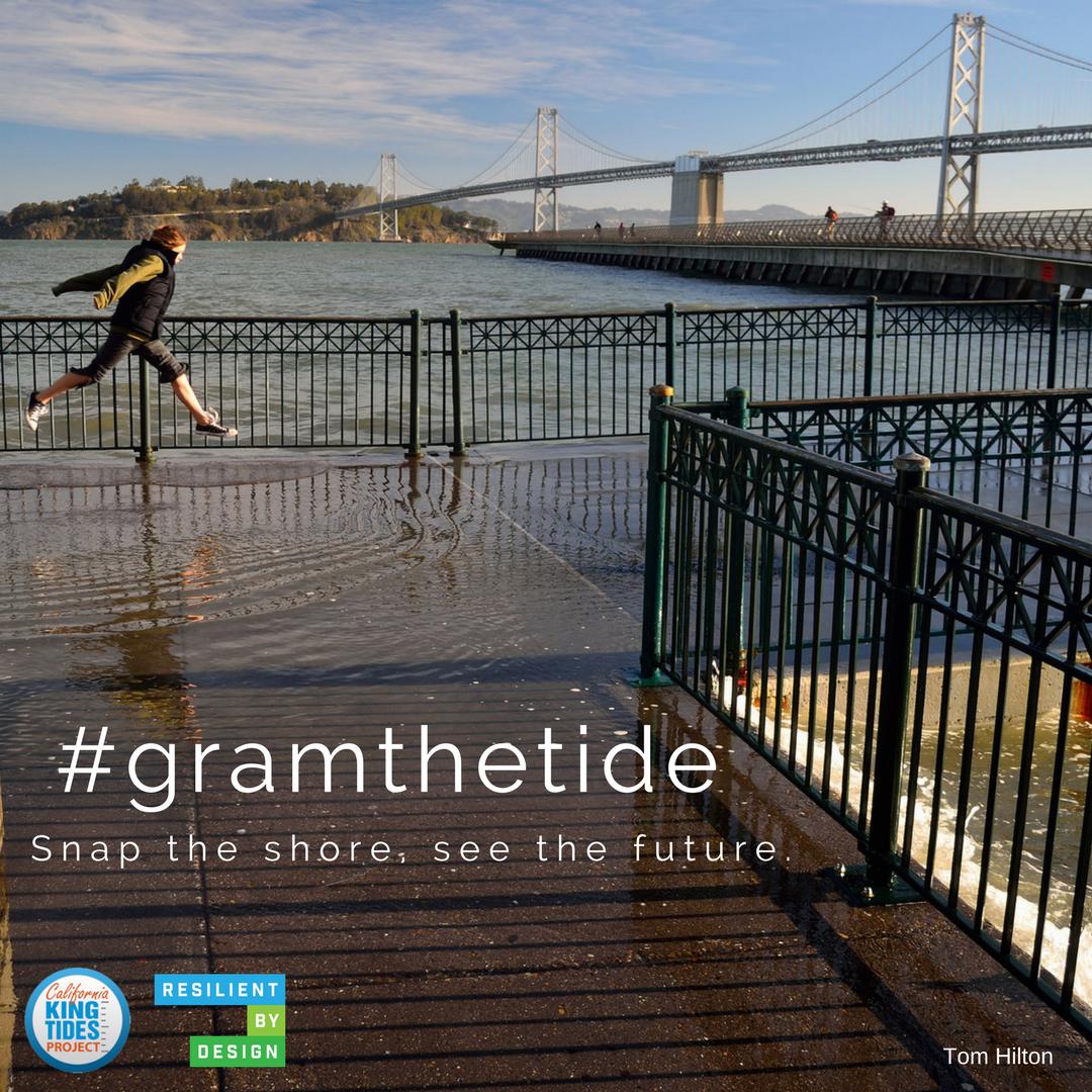 #gramthetide (3).png