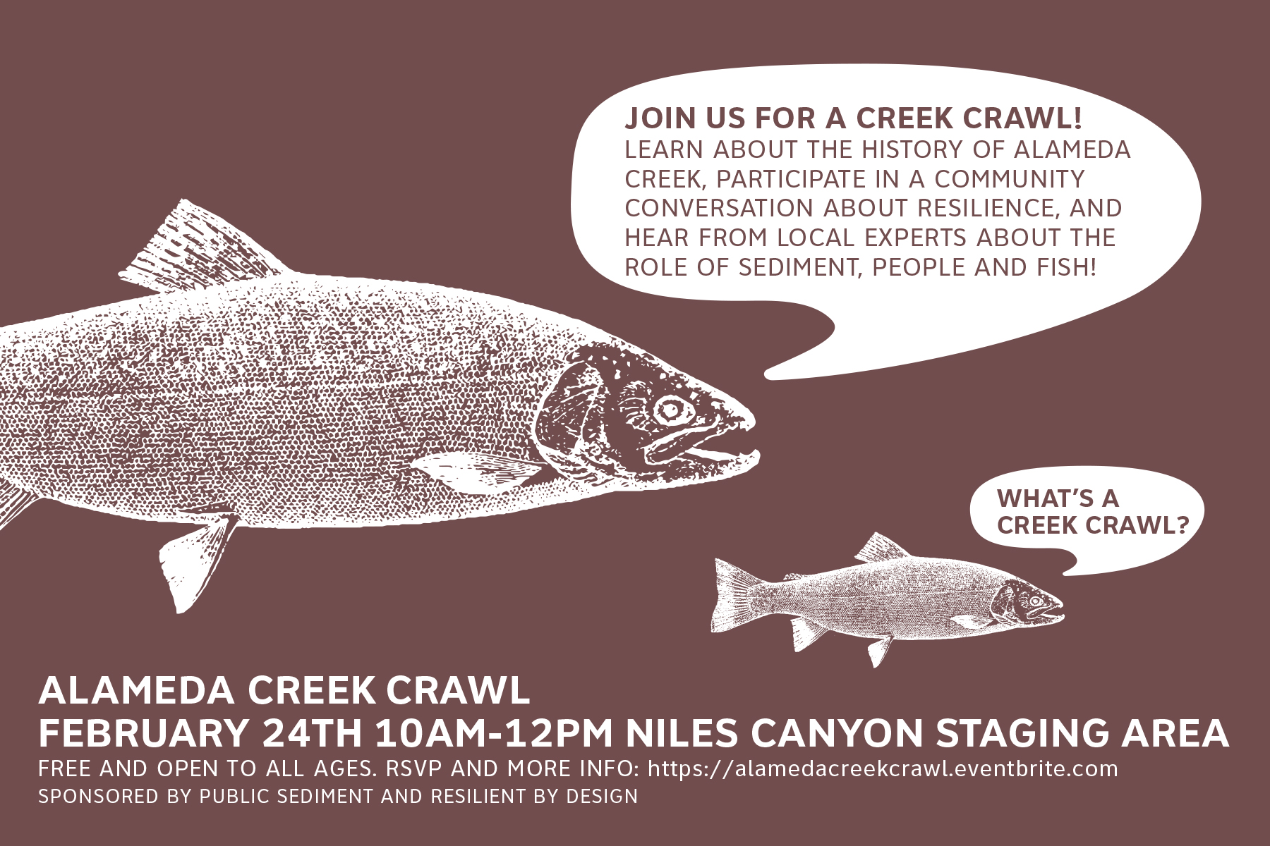 Creek Crawl Feb 24 (1).jpg