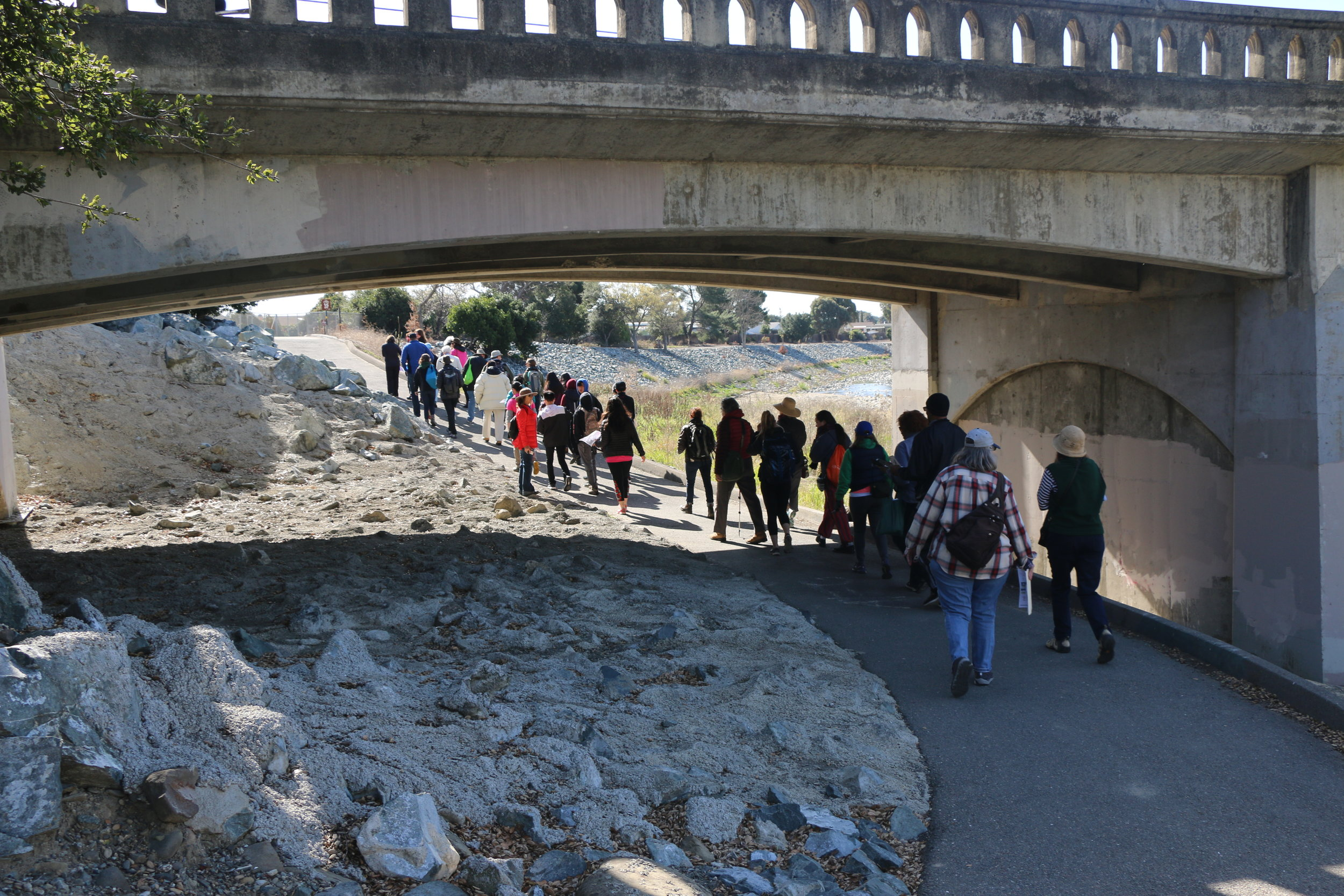 Creek Crawl passes underneath Old Canyon Road on the south side of the Alameda Creek Trail.