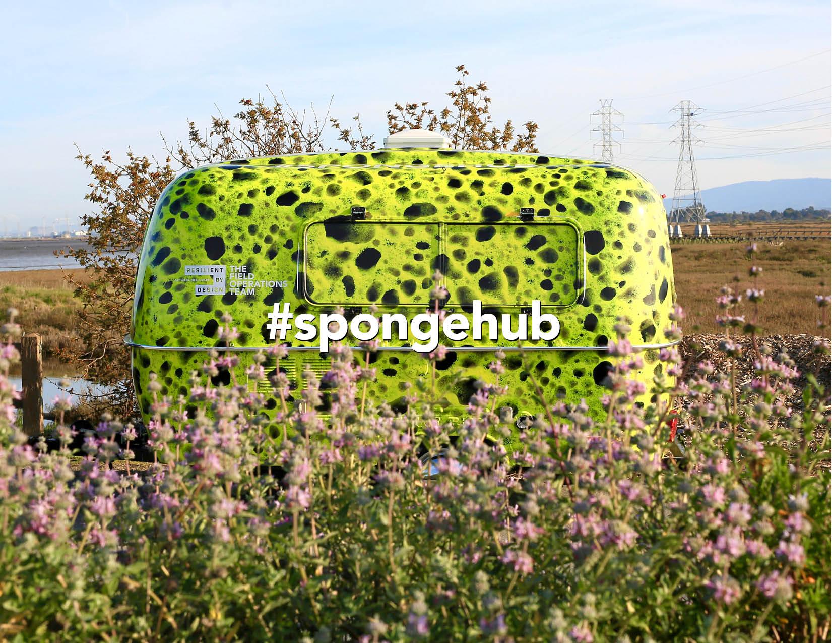 SpongeHub.jpg