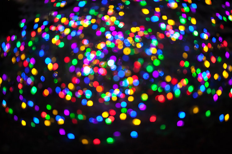 2017 Christmas Tree Lighting