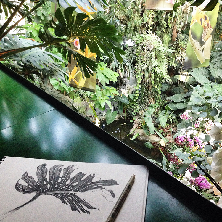The original pen and ink drawing inspired by the Jardin des Plantes, Paris