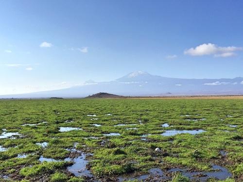 The Way to Kilimanjaro, Kenya