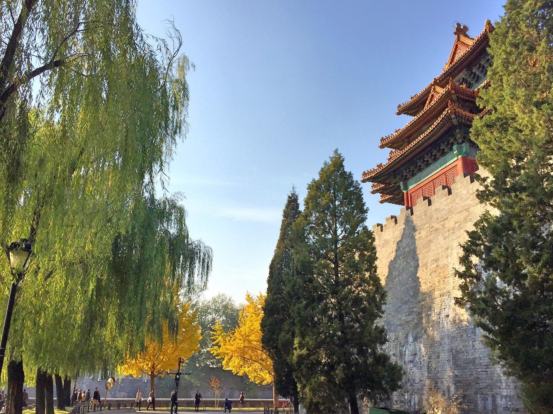 Beijing Fall