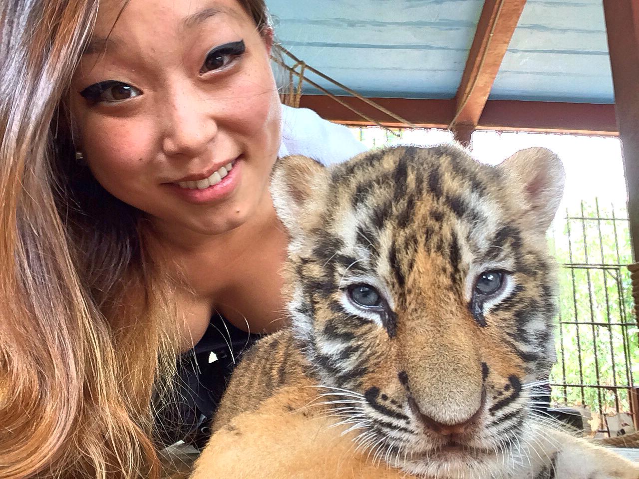 Tiger Buddies