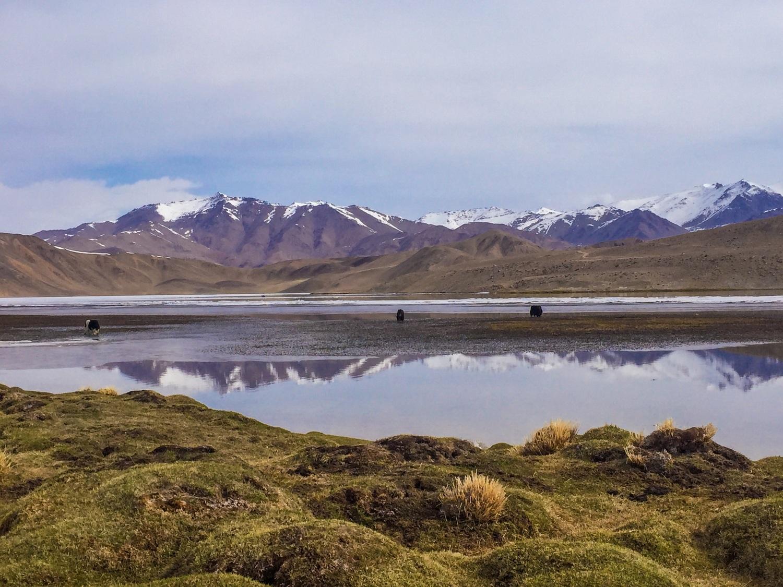 Lazy Morning at Bulunkul Lake, Tajikistan