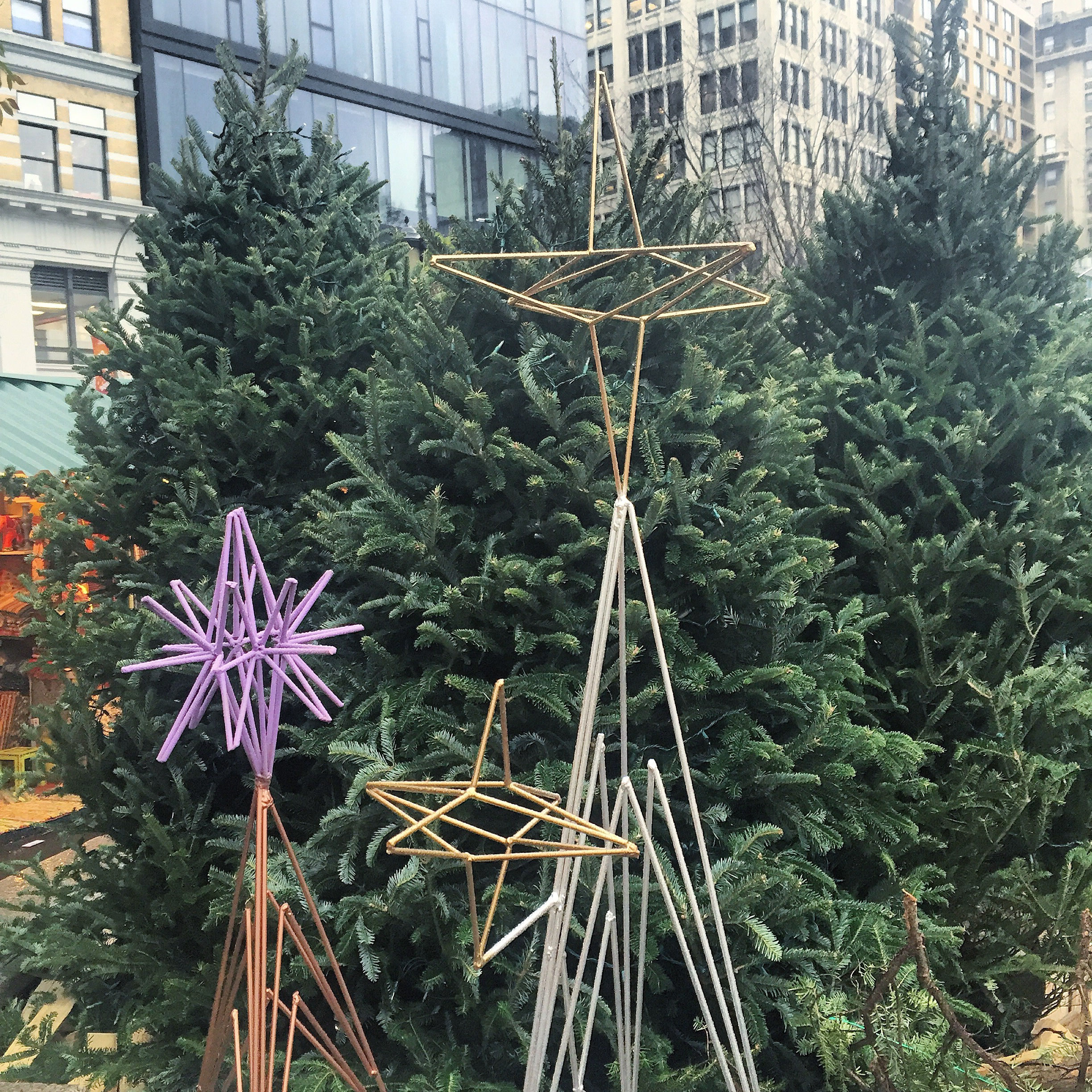 union sq trees stars.jpg