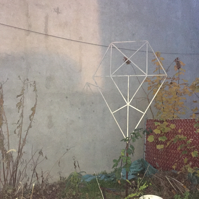 diamonds in the yard sun.jpg