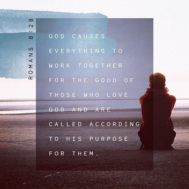 """So we are convinced that every detail of our lives is continually woven together to fit into God's perfect plan of bringing good into our lives, for we are his lovers who have been called to fulfill his designed purpose."" ‭‭Romans‬ ‭8:28‬ ‭TPT‬‬"