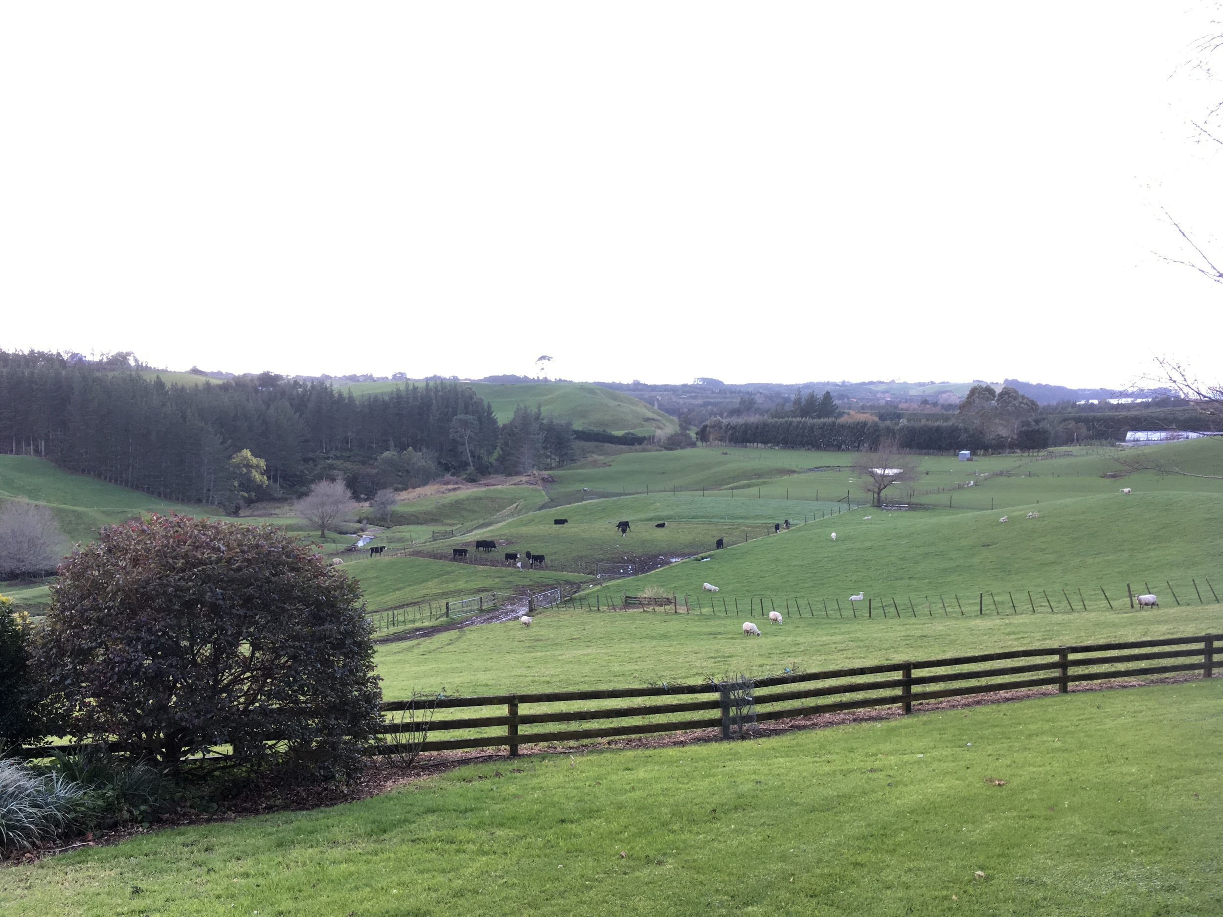 The view of the farm