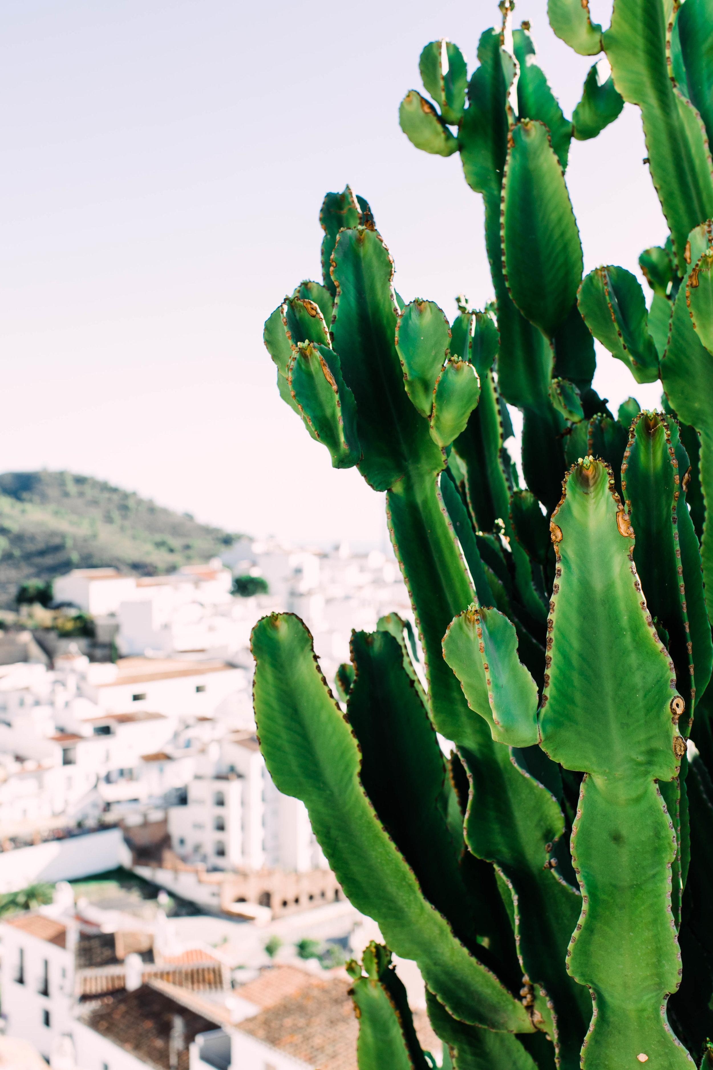 Malaga Spain Wedding Photography