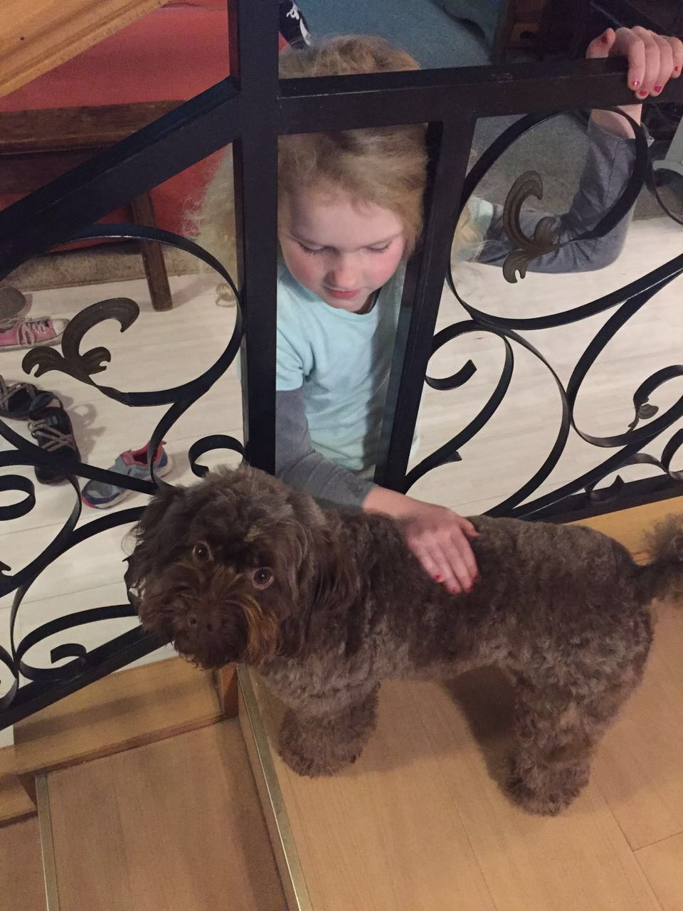 Eden loves this little dog, Coco.