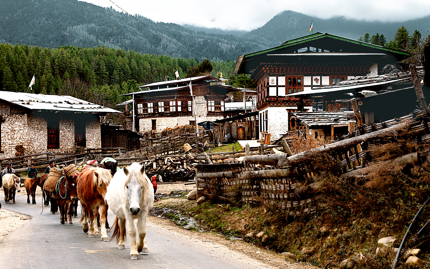 Bumthang-ChumeyVillage-vincent-2174-forweb.jpg