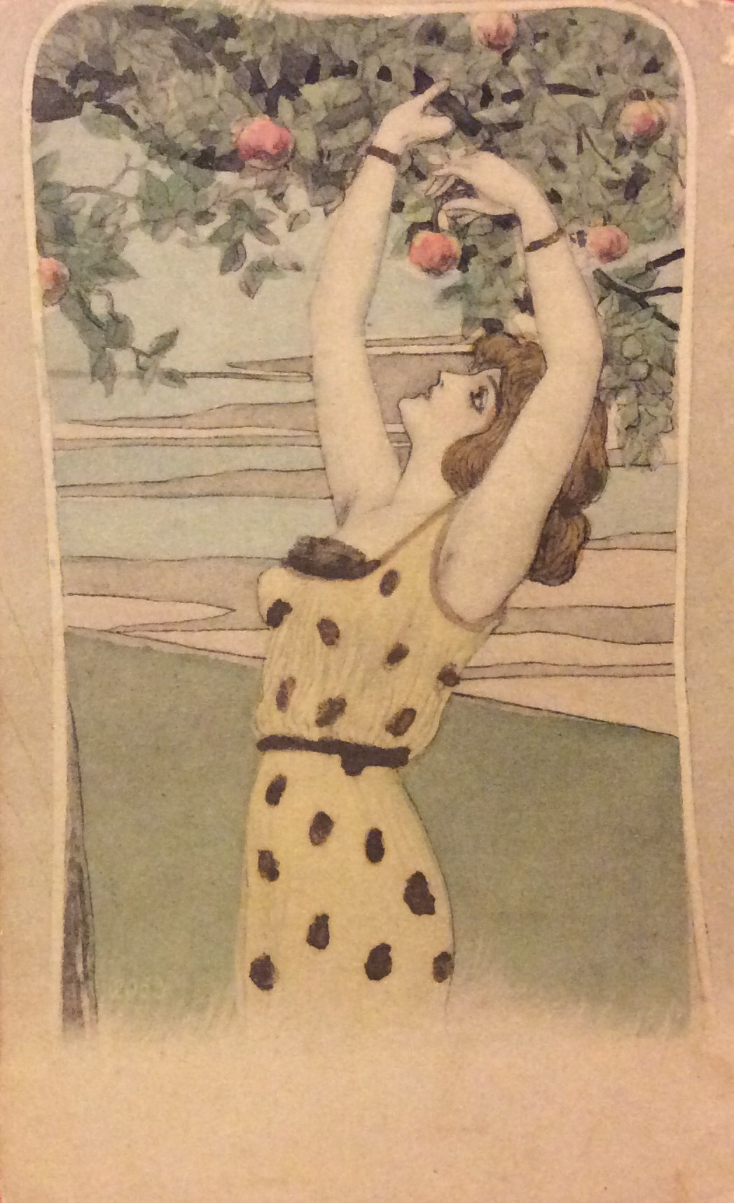 A German card showing a young lady picking apples