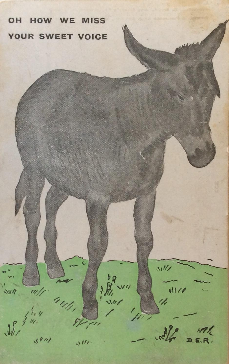 1910 November 11 Hee Haw