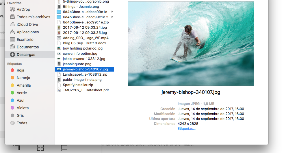 Yikes - a monster! File size is 1.6 MB, and dimensions (explained below) are 4242 x 2828!