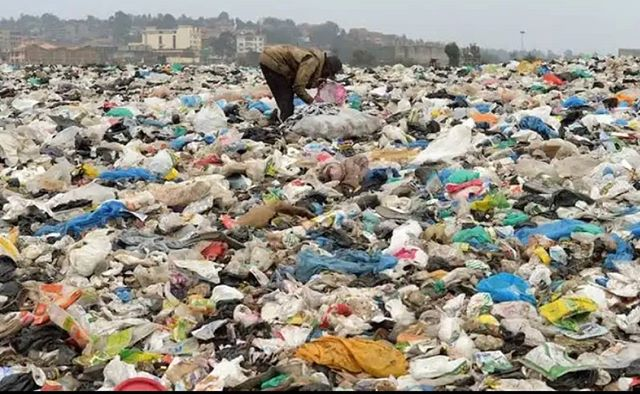 Global Conservation Stories: #Kenya  has once again demonstrated it's direction of caring for the natual environment. President Uhuru Kenyatta has just announced that the ban on single use plastics in all protected areas including beaches, forests and conservation areas will be effective on 5th June 2020. This comes just 2 years after Kenya banned the use of polythene bags and packaging material. . . . #kenya #uhurukenyatta #singleuseplastic #conservation #biodiversity #nature #savetheearth  #plasticrevolution #plastic
