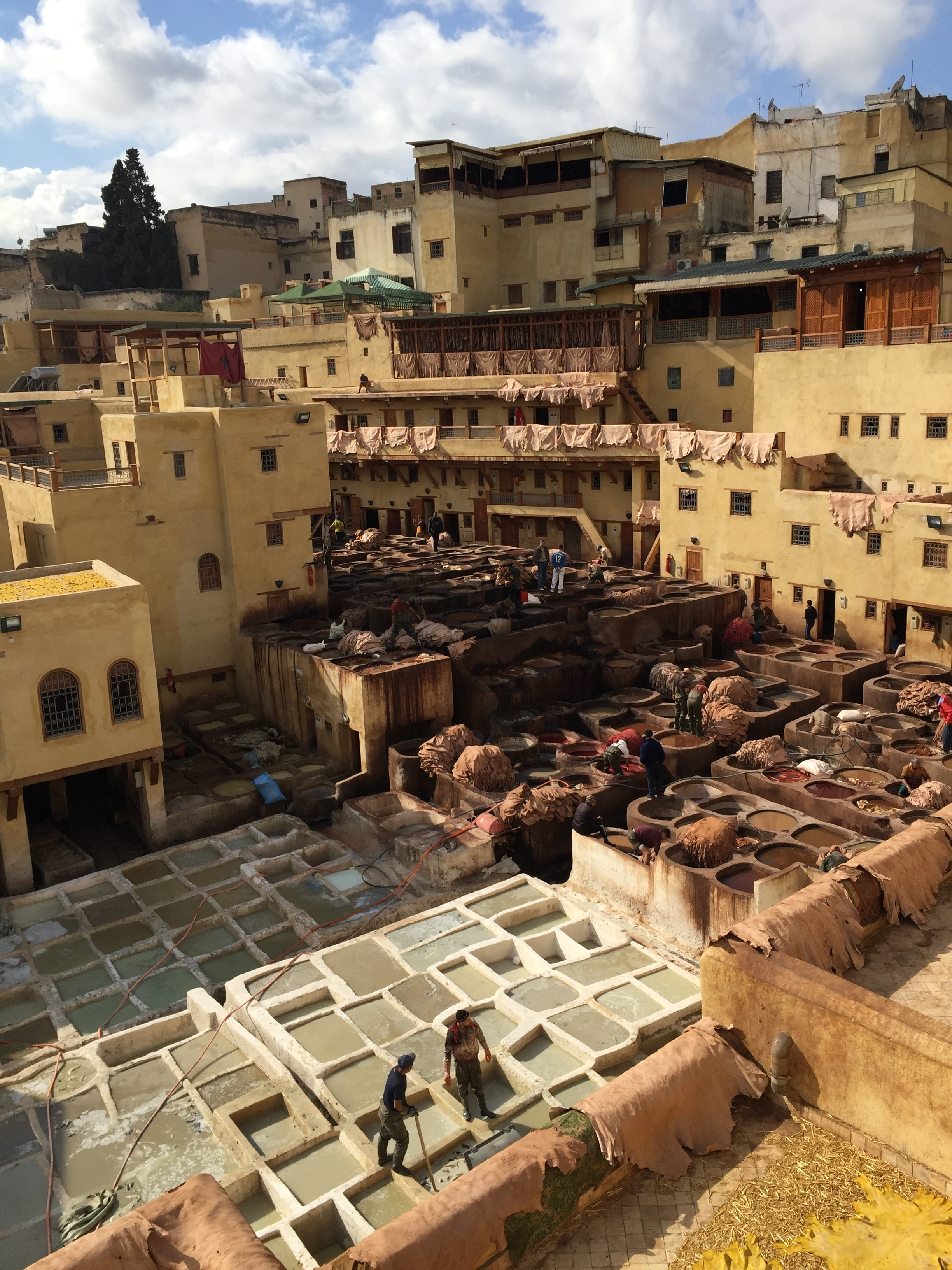 The tannery of Fez