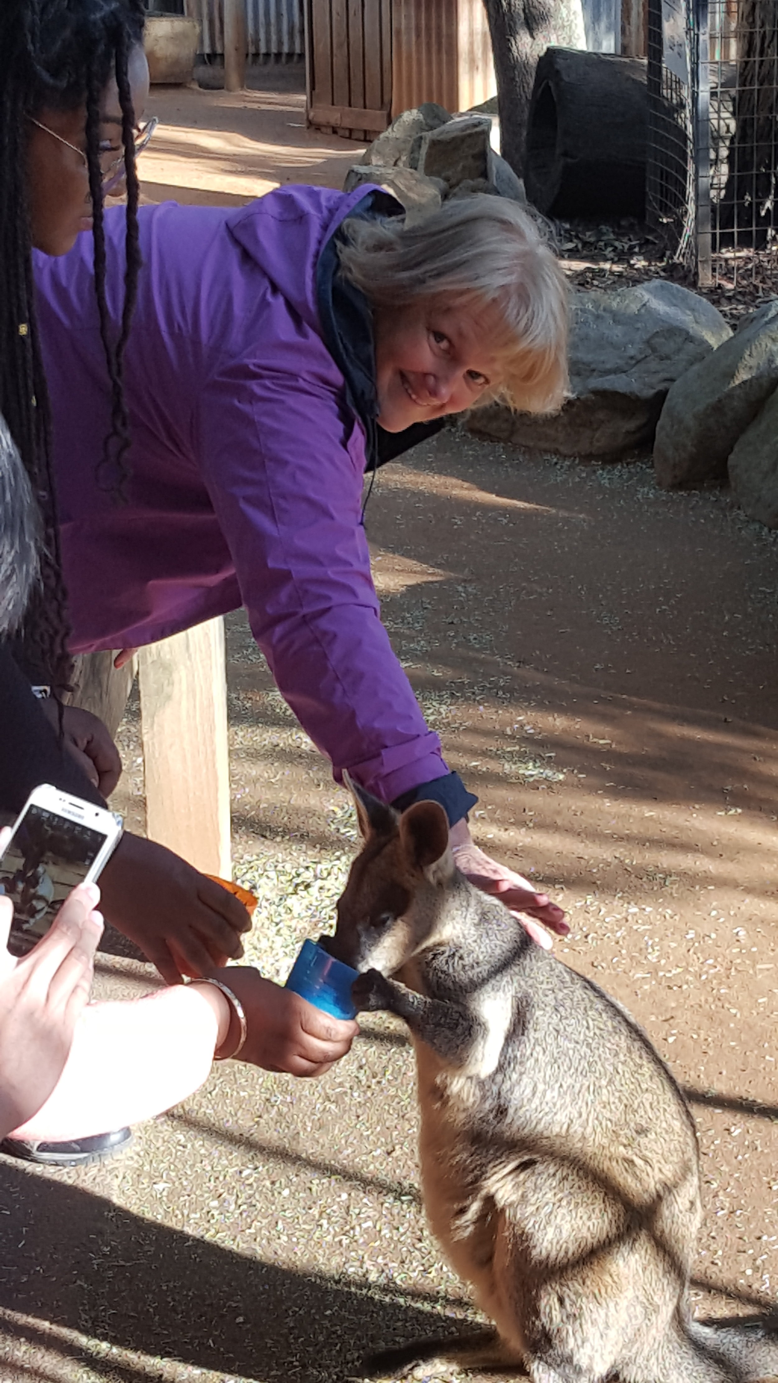 Jean and the Kangaroos