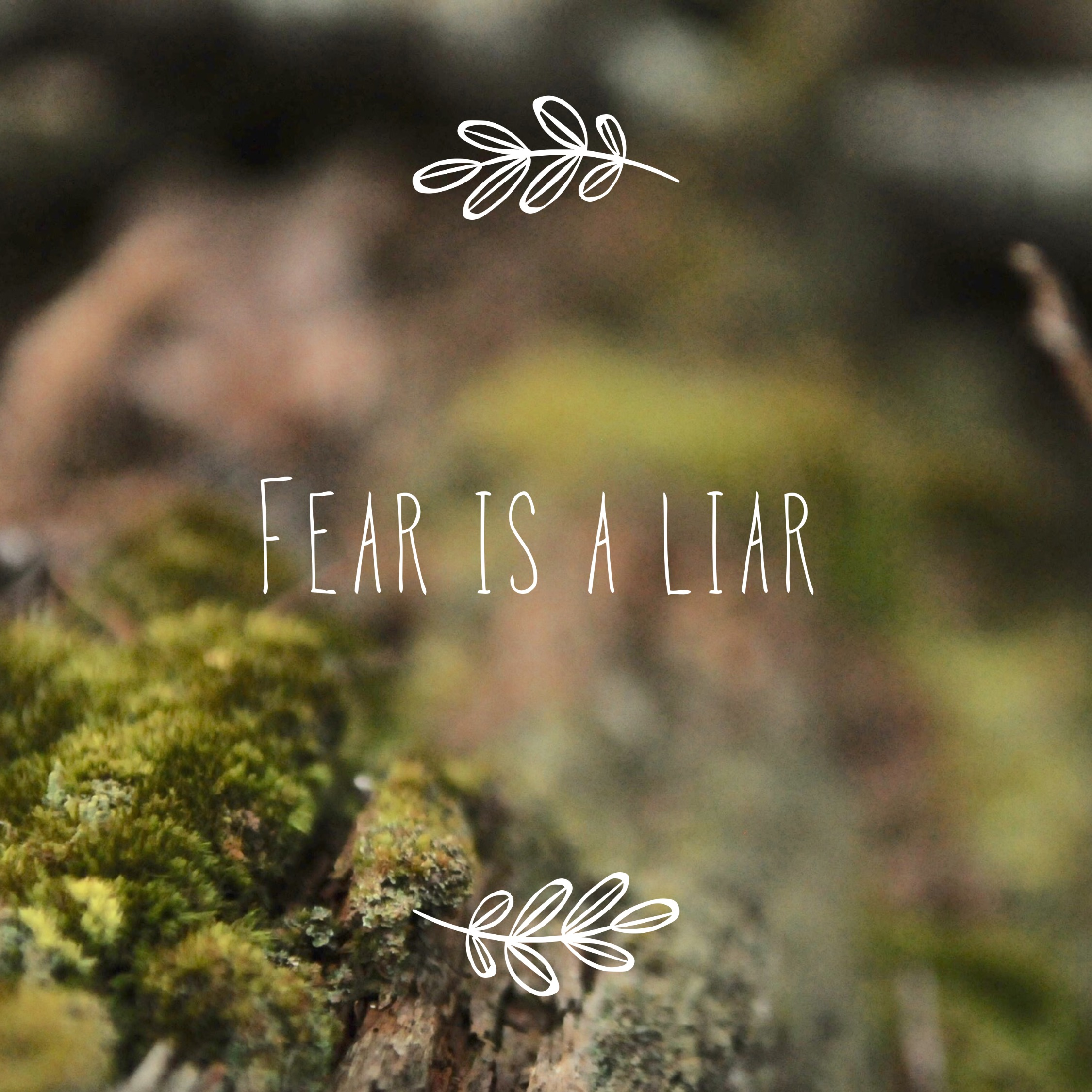 Inspirational Quotes about Fear | Quotes for Women | Fear is a Liar | Song Lyric Quotes | Encouragement | Winston Salem, NC | Winston Salem photographer | www.jasperandfern.com