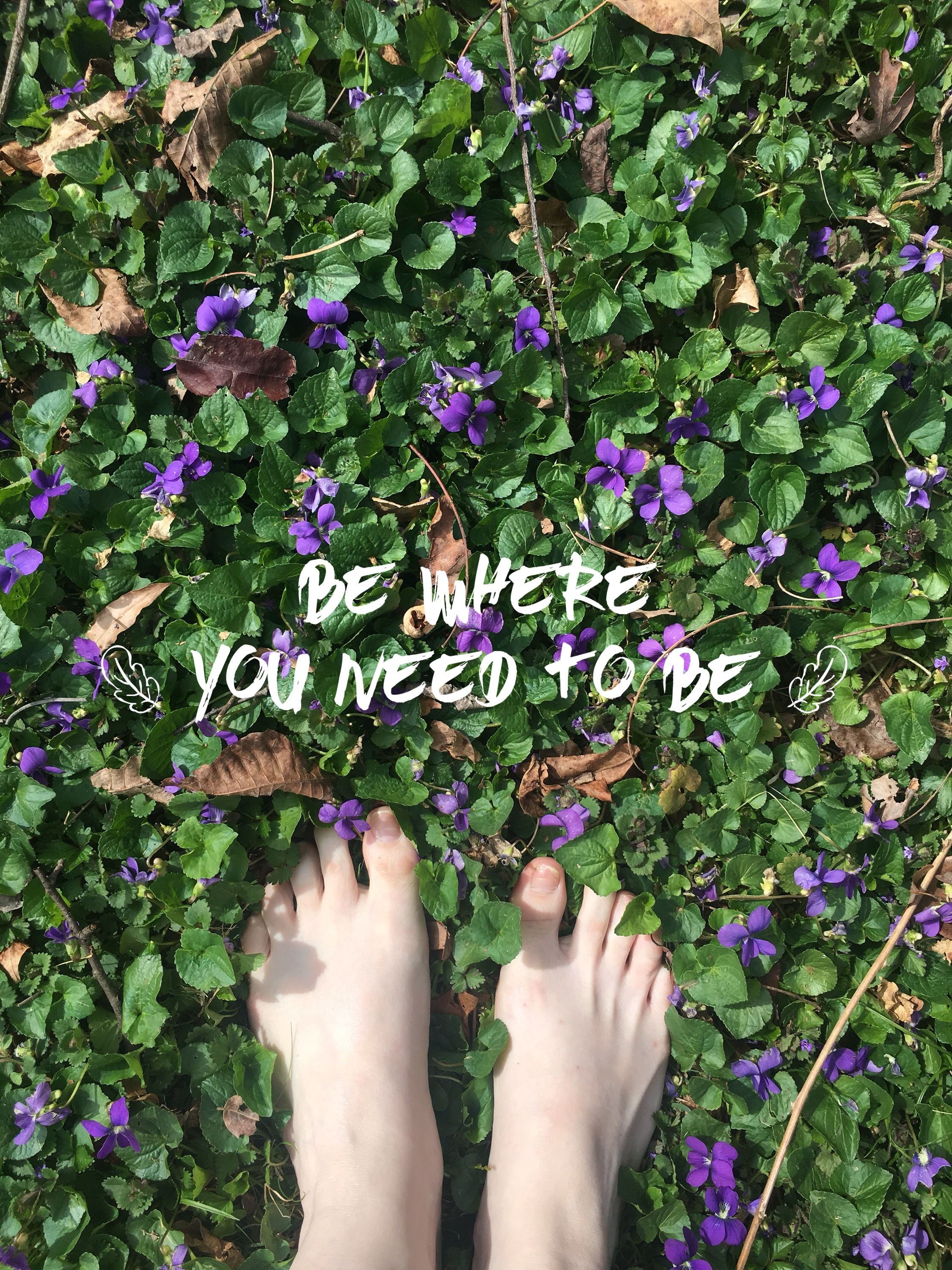 Inspirational Quotes for Women | Depression Quotes | Health and Wellness Quotes | Encouraging Quotes | Bare feet | purple flowers | field of flowers | Jasper & Fern | www.jasperandfern.com