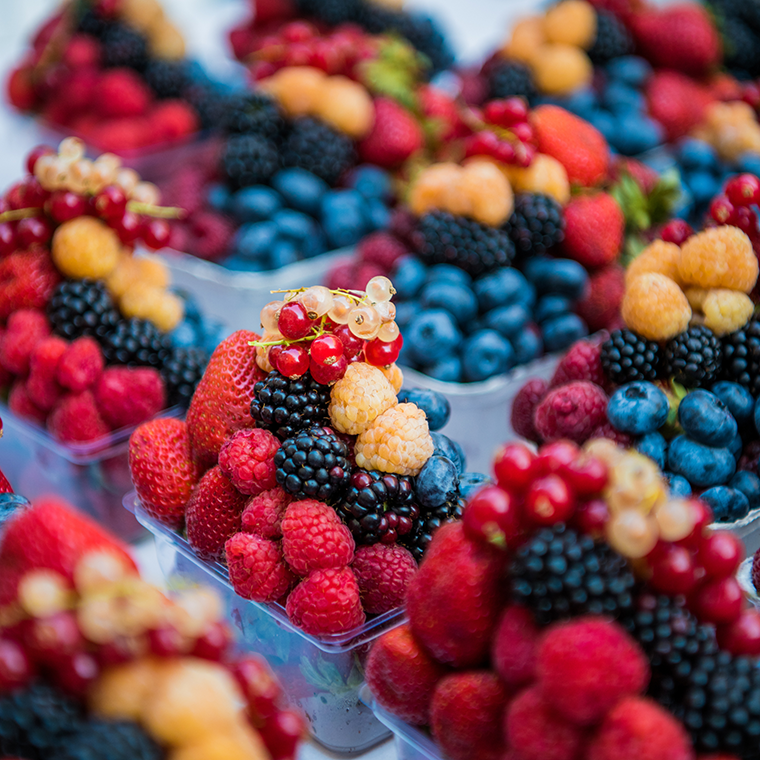 berries photo.png