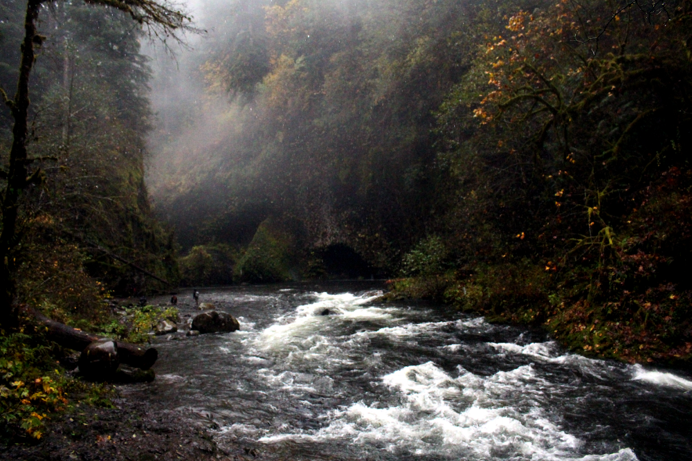 The misty mouth of Lower Punchbowl Falls