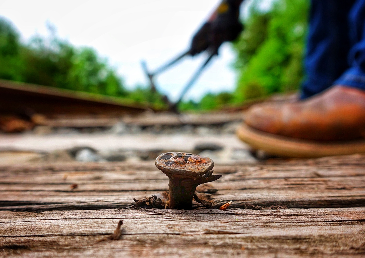 Date nail in a tie on a railroad track