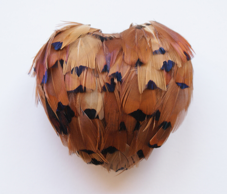 Pheasant Heart.jpg